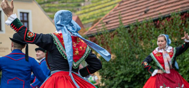 5. Churfürstliches Weinbergfest